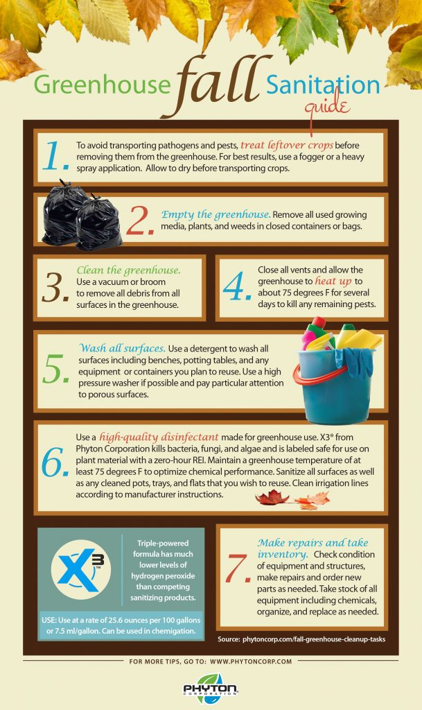 fall-sanitation-infographic2